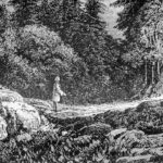 ein alter schwarz und weiß Stich eines Waldes